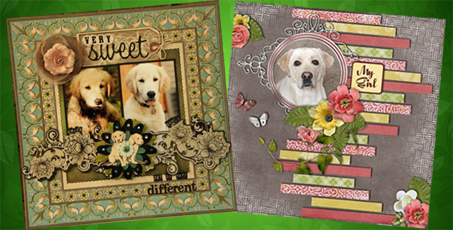 Black Lab Photo Album and Scrapbook